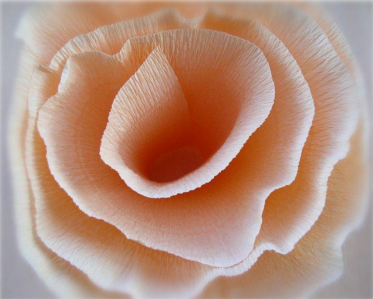 Топиарий роз из гофрированной бумаги 90