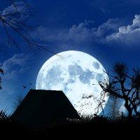 Явление супер-Луны, или полная Луна в перигее