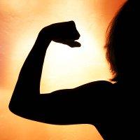 как составить программу питания для похудения самостоятельно