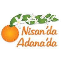 Карнавал цветения апельсинов в Адане