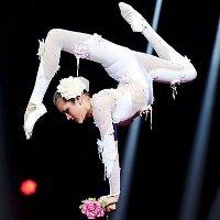 Фестиваль-конкурс эстрадно-циркового искусства «Звёздные дети»
