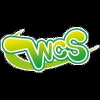 Международный чемпионат косплея World Cosplay Summit