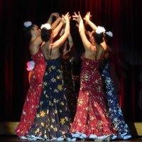 Всероссийский фестиваль фламенко в Рязани