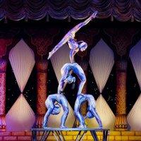 Всемирный фестиваль циркового искусства «Идол»