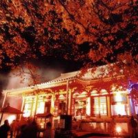 Фестиваль «Тэндзин» в Осаке