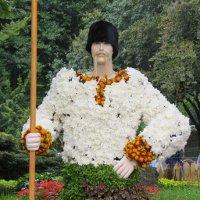 Выставка цветов на Певческом поле в Киеве