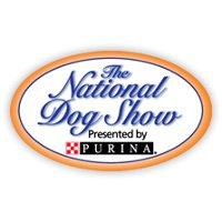 Национальная выставка собак в США