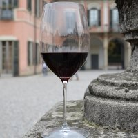 Международный фестиваль вина в Берегово