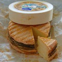 Фестиваль сыра в Ливаро