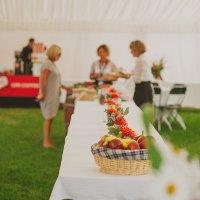 Фестиваль вина и еды в Марлборо