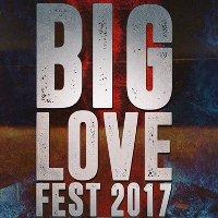 BIG LOVE FEST в Киеве