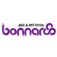 Музыкальный фестиваль Bonnaroo