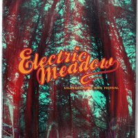 ELECTRIC MEADOW FEST