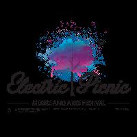 Музыкальный фестиваль Electric Picnic