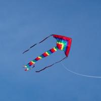 Фестиваль воздушных змеев в Гуджарате