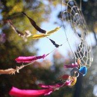Осенний фестиваль Seasons