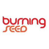Фестиваль Burning Seed