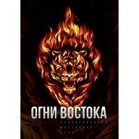 Международный фестиваль огня «Огни Востока»