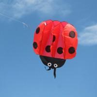 Фестиваль воздушных змеев «Летать легко!» в Казани