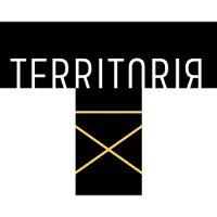 Международный фестиваль-школа «Территория»