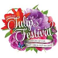 Фестиваль тюльпанов Tesselaar в Австралии