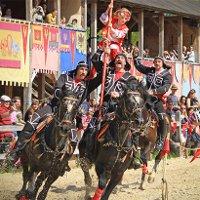Фестиваль конно-трюкового искусства «Кентавры»